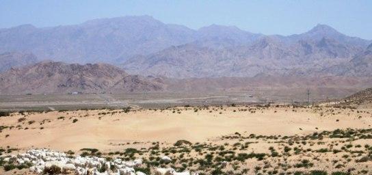 アラシャンの山.JPG
