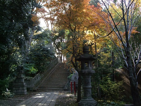 氷川神社石段.jpg