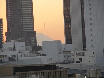 2013セルリアンタワーの富士山.jpg